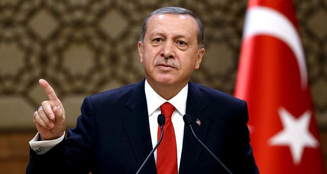 Erdogan sert danishdi