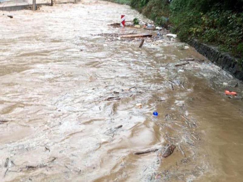 Güclü yağış İsmayıllıya ciddi ziyan vurdu