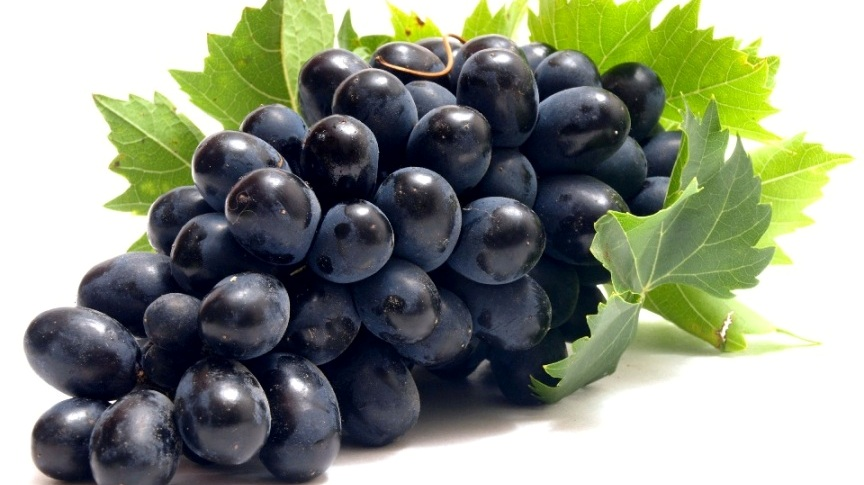 Hansı üzüm ən faydalıdır