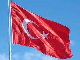 İstanbulda 235 polis əməkdaşı saxlanılıb