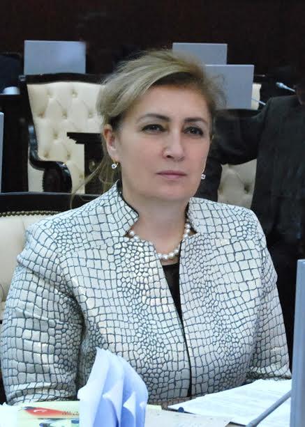 Məlahət İbrahimqızı Araz Əlizadəni qınadı