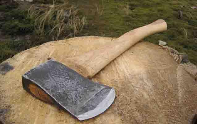 Arvadını balta ilə öldürdü –