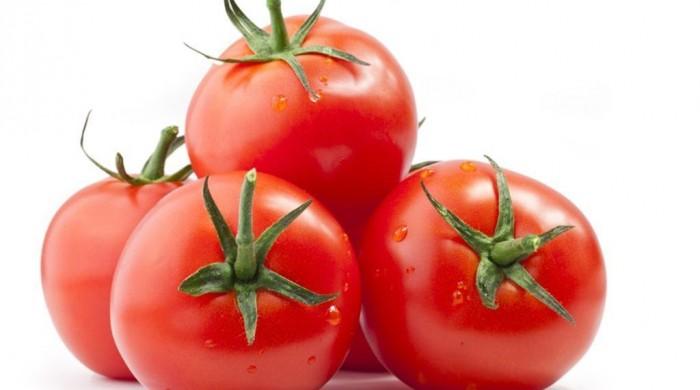 Azərbaycan Rusiyaya pomidor ixracının həcminə görə liderdir
