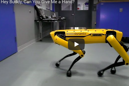 Robot itlərin yeni bacarıqları