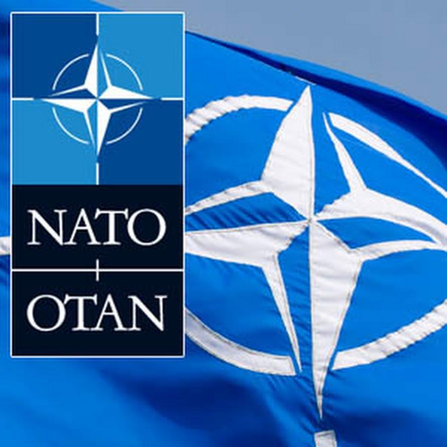 Cənubi Qafqaz uğrunda Rusiya-NATO qovğası