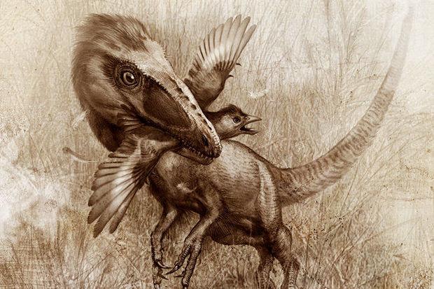 Çində 100 milyon il yaşı olan dinozavr izləri tapılıb