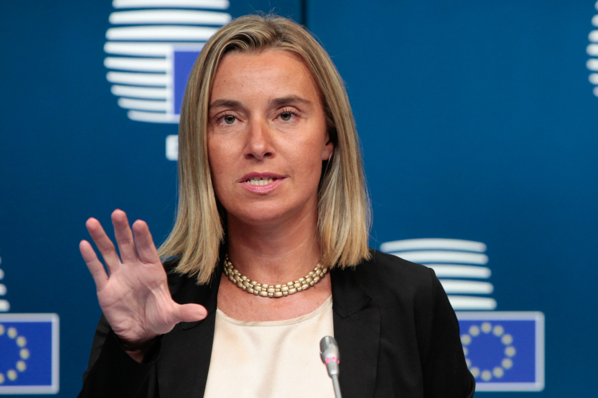 Avropa İttifaqı Milli Şuranın aksiyası ilə bağlı bəyanat verdi