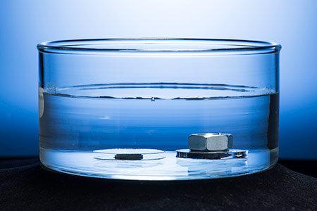 Alimlər qarışqa və hörümçəklərin sayəsində suda batmayan metal yaratdı – FOTO-VİDEO