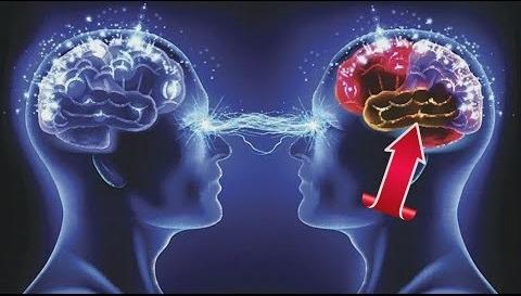 İnsan beyni haqqında sizi HEYRƏTƏ SALACAQ maraqlı faktlar –