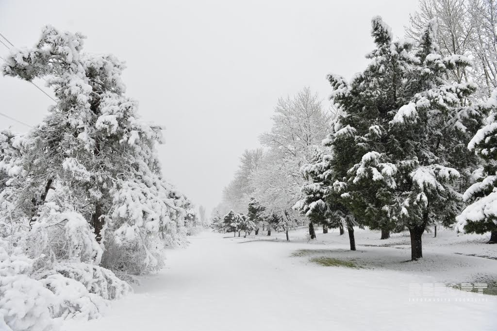 Qar, yağış yağacaq, güclü külək əsəcək, yollar buz bağlayacaq –