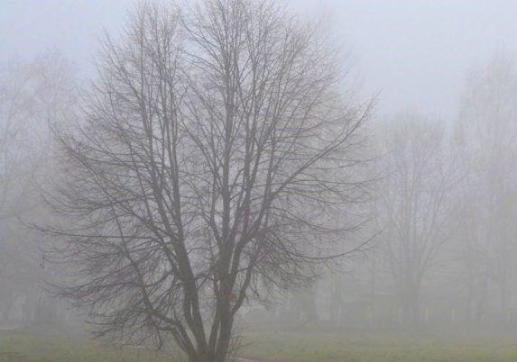 Sabahın havası: Duman, külək