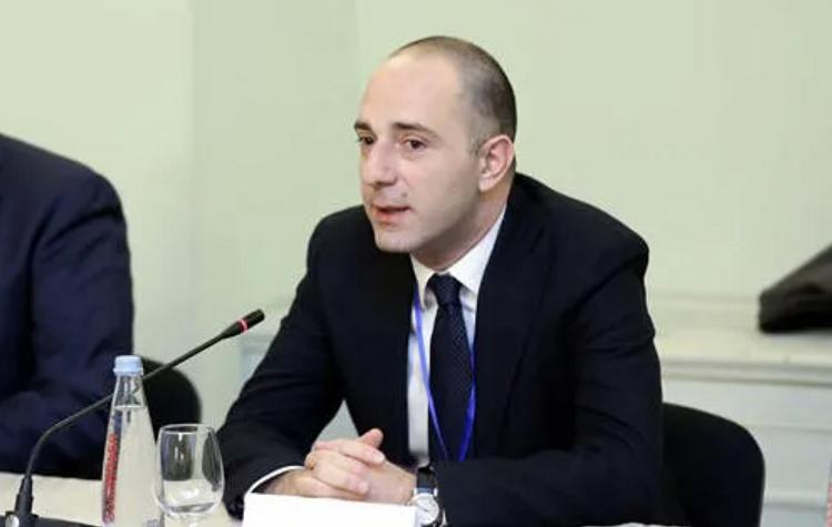 Gürcüstan Xarici İşlər nazirinin müavini istefa verib